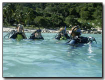 Confined Water Training, Koh Tao Thailand