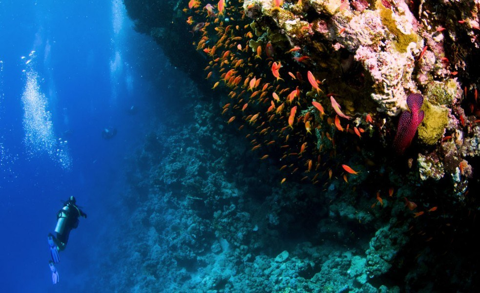 Deep Diving Courses – Taking Things to New Depths!
